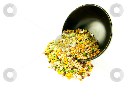 Soup Pulses Spilling from a Bowl stock photo, Assorted soup pulses spilling from a round black bowl on a white background by Keith Wilson