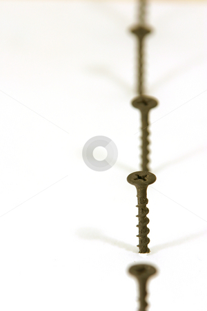 Screws in Line stock photo,  by Mehmet Dilsiz
