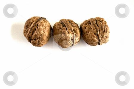 Three walnuts stock photo, Three walnuts on white background by Minka Ruskova-Stefanova