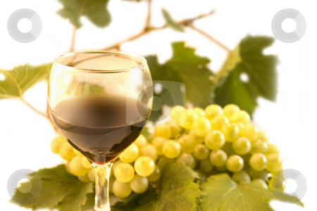 Wine and grape stock photo, Wine and grape by Minka Ruskova-Stefanova