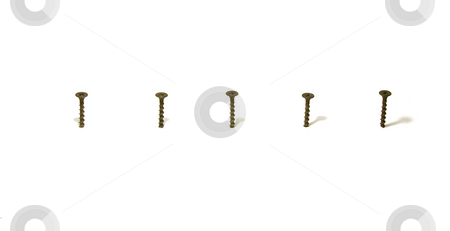 Screws in Line stock photo, Horizontal Line by Mehmet Dilsiz