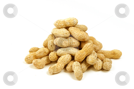 Close up on Penauts stock photo, Isolated Peanut Shell Pile by Mehmet Dilsiz