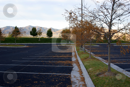 Empty Parking Lot stock photo, Trees in an Empty Parking Lot by Mehmet Dilsiz