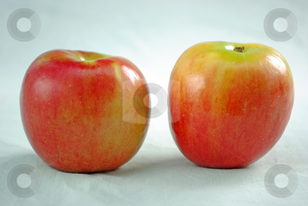 Apples stock photo, Two brightly colored apples. by Kristine Keller
