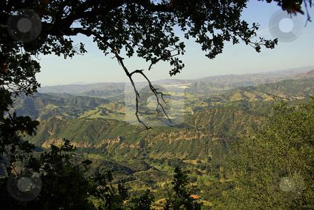 Santa Monica Mountains stock photo, Branches frame a view across the Santa Monica Mountains. by Kristine Keller