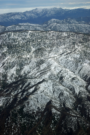 Snow-Covered Forest, Aerial View 2 stock photo, An aerial view of a Southern California forest in the late winter. by Kristine Keller