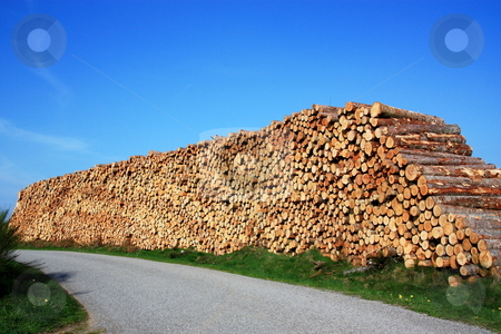 Renewable Energy - Lumber stock photo, A 4m high pile of lumber awaits collectiom alongside a rural road. by Gozzoli