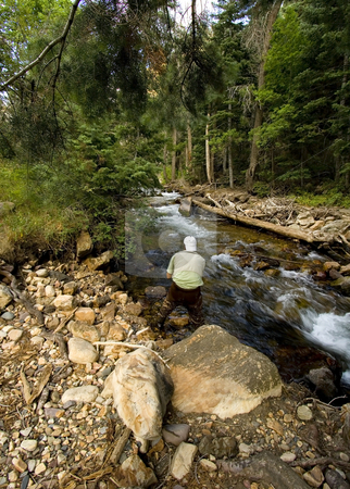 Fisherman in River stock photo, Fisherman in River fly fishing in the Canyons by Mehmet Dilsiz