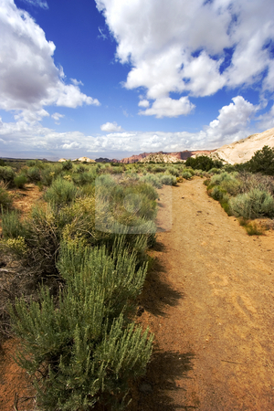 Path to the Redrock Mountains in Snow Canyon - Utah stock photo, Snow Canyon in St. George, Utah by Mehmet Dilsiz