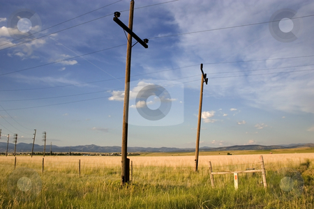 Field in Helena stock photo, Field with Electric Poles in Helena Montana by Mehmet Dilsiz