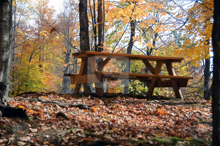Picnic table stock photo, Picture of a picnic table in a forest during the autumn season by Alain Turgeon