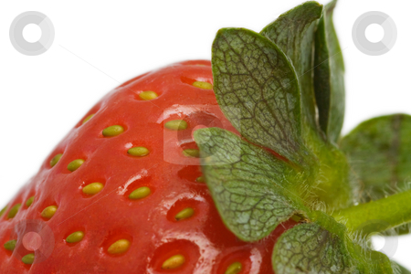 Extreme close up of a strawberry stock photo, Extreme close up of a fresh strawberry, isolated on white background by Gabriele Mesaglio