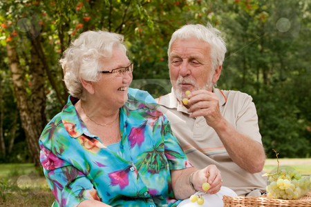 Do you want some fruit stock photo, Elderly couple enjoying the spring in the park by Frenk and Danielle Kaufmann