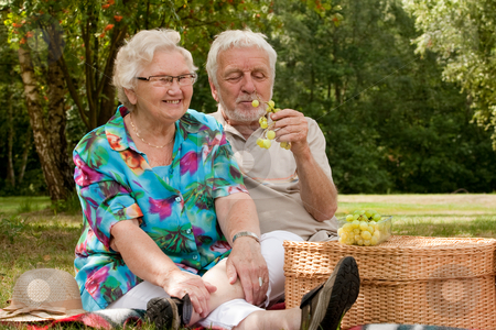 Senior couple picknicking in the park stock photo, Elderly couple enjoying the spring in the park by Frenk and Danielle Kaufmann