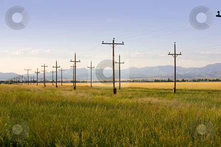 Field in Helena stock photo, Field with Symmetric Electric Poles in Helena Montana by Mehmet Dilsiz