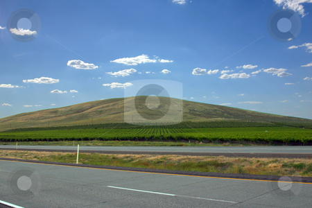 Countryside Farming Fields on a Hill stock photo, Farming Fields on a Hill with clouds on the background by Mehmet Dilsiz