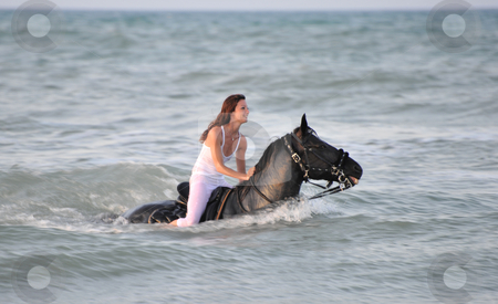 Swimming horse stock photo, Young woman swimming winth her black stallion in the sea by Bonzami Emmanuelle