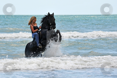 Rearing horse in the sea stock photo, Young woman on a rearing black stallion in the sea by Bonzami Emmanuelle