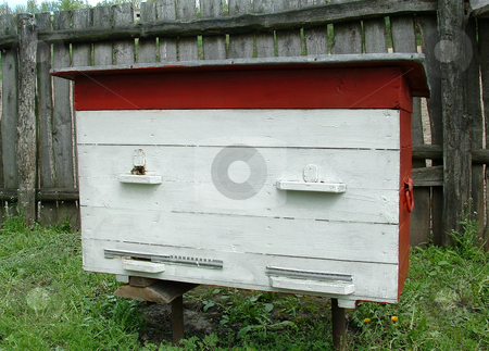 Beehive stock photo, The image of a bees house in village on a personal plot in May. by citcarsten