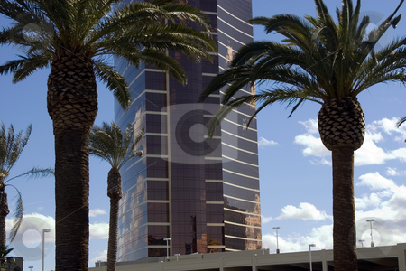 Mirrored Business Building in a Tropical Area stock photo, Sky reflecting from the Mirrored Business Building by Mehmet Dilsiz
