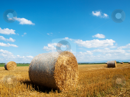 Countryside landscape with bales of hay stock photo, Scenic landscape of a beautiful freshly cut wheat field with haystacks  under blue sky with clouds in southern France by Laurent Dambies