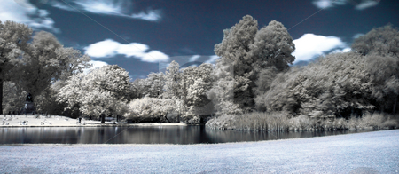 Infrared panoramic  landscape stock photo, Infrared panoramic  landscape  of Vonderpark in Amsterdam by Laurent Dambies