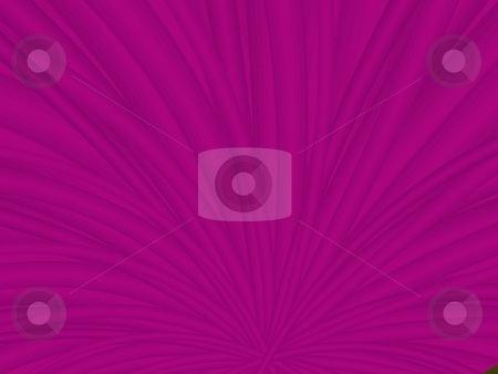 Purple Spray stock photo, Computer generated image with an abstract design in shades of purple. by Colin Forrest