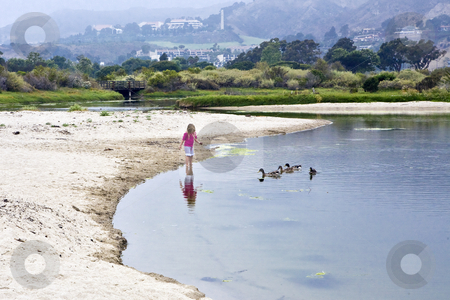 Malibu Lagoon Duck Girl  stock photo, Small girl lures ducks at Malibu Lagoon in Southern California and mist shrouds Pepperdine University in the background by Bart Everett