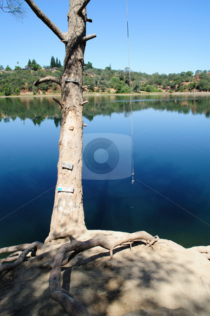Rope Swing stock photo, A river rope swing waiting for someone to take the first plunge into the water on a hot summer day by Lynn Bendickson