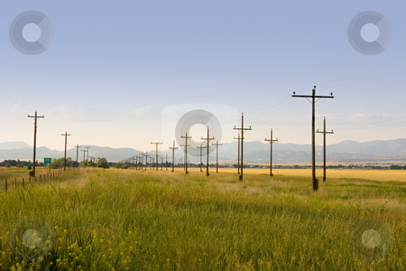 Electric Poles in Perspective - Country stock photo, Field with Electric Poles in Perspective - Helena Montana by Mehmet Dilsiz
