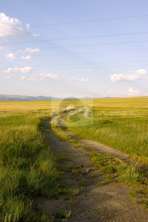 Path in the Field stock photo, Path Leading to the Field in Helena Montana by Mehmet Dilsiz
