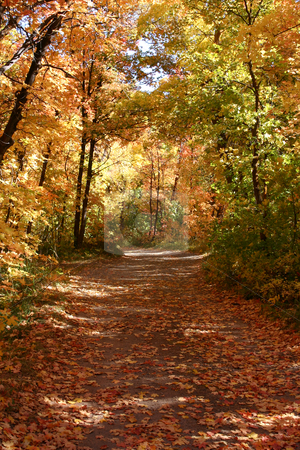 Down the Fall Path  stock photo, Down the Fall Path - East Canyon Reservoir by Mehmet Dilsiz