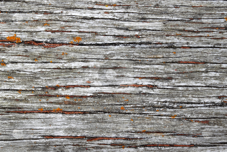 Old weathered wood texture natural background. stock photo, Old weathered wood texture natural background. by Stephen Rees