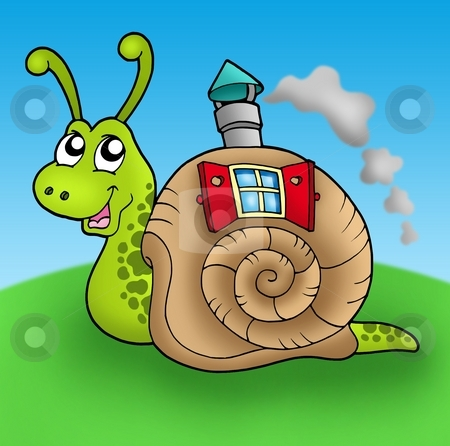 Snail with shell house on meadow stock photo, Snail with shell house on meadow - color illustration. by Klara Viskova