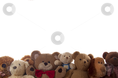 Teddy bears stock photo, Group of teddy bears in a row along bottom edge of picture, with copy space, isolated on white. by Jeff Carson