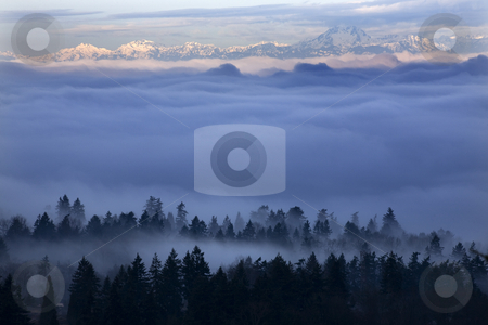 Seattle Under the Fog stock photo, Fog Covers Seattle Washington with Olympic Mountains in Distance. Taken from Somerset, Bellevue, Washington in the morning by William Perry