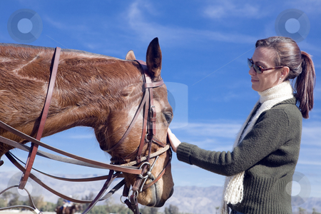 Woman with Horse stock photo, Woman comforts a polo horse before a chucker by Bart Everett