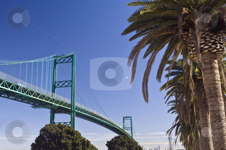 Vincent Thomas Bridge and Palms, Los Angeles Harbor stock photo, Vincent Thomas Bridge soars over the main channel between the San Pedro area of Los Angeles and Terminal Island. by Bart Everett
