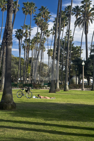 Bike Sunbather stock photo, Young womanl in a bikini stretches out on park lawn to read beside her bicycle by Bart Everett