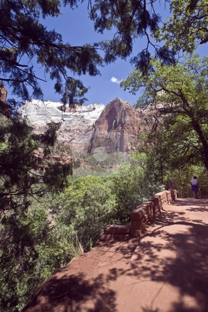 Zion Emarald Pool Trail  stock photo, Trail to the Emarald Pool offers a view of the Towers of the Virgin in Zion National Park by Bart Everett