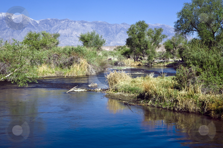 Owens River north of Bishop, CA stock photo, Owens River flowing through cattle pasture along the Eastern Sierra north of Bishop, CA by Bart Everett