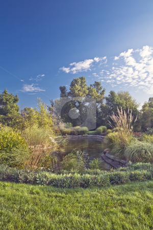 Arboretum Pond stock photo, Arboretum pond is surrounded by lush foliage under a cloud-streaked blue sky by Bart Everett