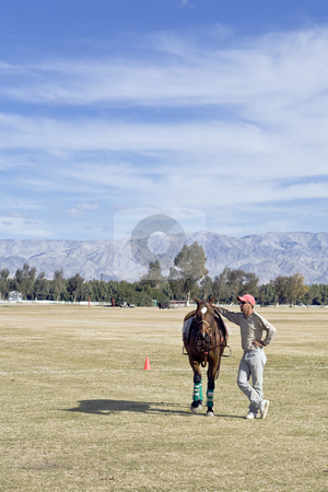 Groom With Fresh Horse stock photo, Groom Antonio Soto waits for his polo player to claim a fresh horse. by Bart Everett