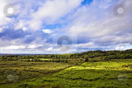 Clouds Over Maui Farm Land stock photo, Early morning clouds glow over the lush landscape of East Maui near Hana by Bart Everett