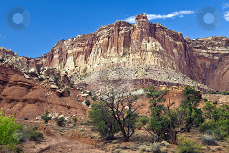 Capitol Reef Bluff stock photo, Bluff rises above a wash in Capitol Reef National Park, Utah. by Bart Everett