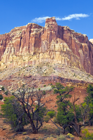 Capitol Reef Bluff stock photo, Rugged stone formation dominates sparse vegetation in Capitol Reef National Park in Utah by Bart Everett