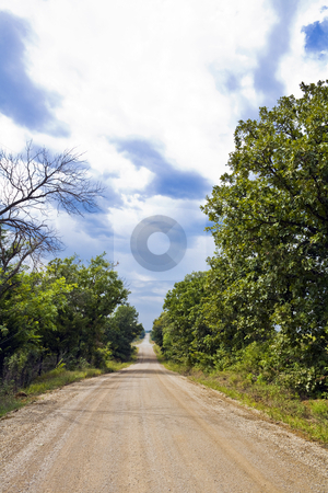 Kansas Rural Road stock photo, Dirt and gravel road cuts through dense foliage in a wilderness area of Kansas by Bart Everett