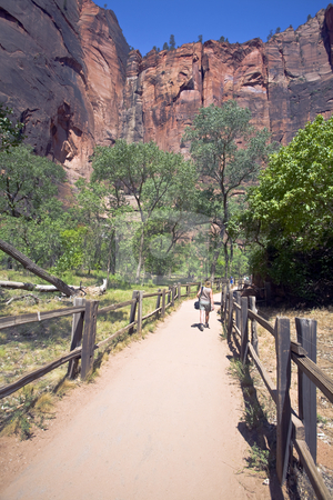 Zion, Temple of Sinawava stock photo, Trail at Temple of Sinawava in Zion winds upriver between canyon walls by Bart Everett