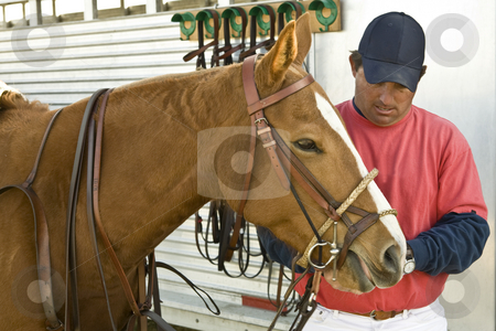 Chris Kerley Readies Horse for Polo stock photo, Chris Kerley adjusts bridle on a polo horse before riding in a polo match by Bart Everett