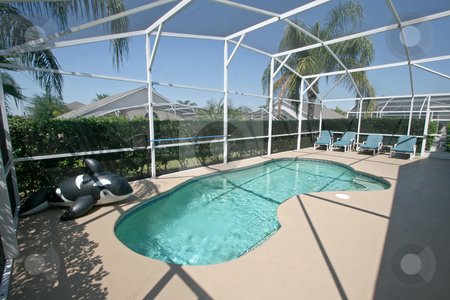 Swimming Pool with Whale stock photo, A Swimming Pool and Lanai with Killer Whale in Florida. by Lucy Clark